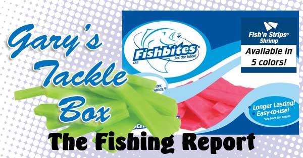 fish-n-strips-shrimp