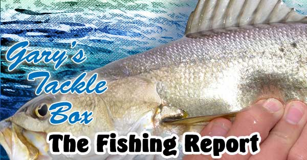 fishing-repot-speckled-trout
