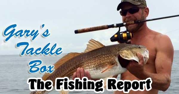 fishingreport12