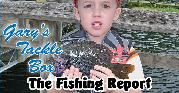 Photo: Florida Fish and Wildlife