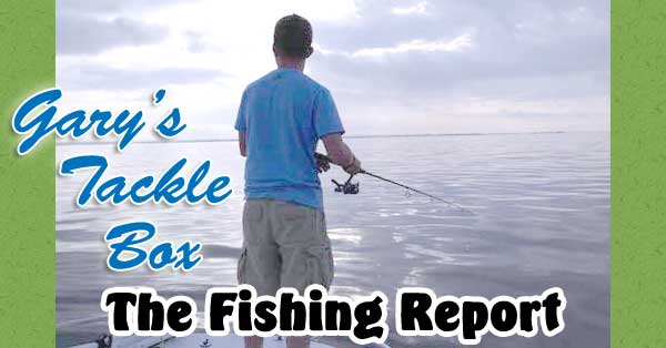 As the holiday season approaches north florida anglers for North florida fishing report