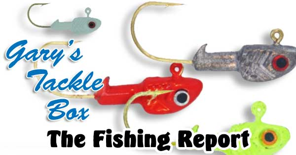 fishing-report17
