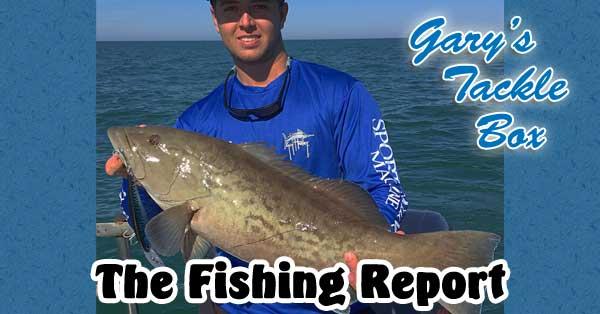 gag-grouper-fishing-report