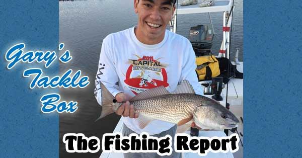 fishing-report-redfish-jacob-tyer