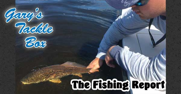 red fish release