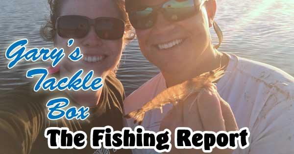 shrimp-fishing-report