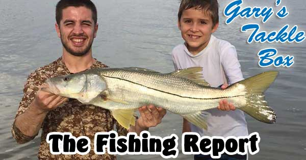 fishing report-snook